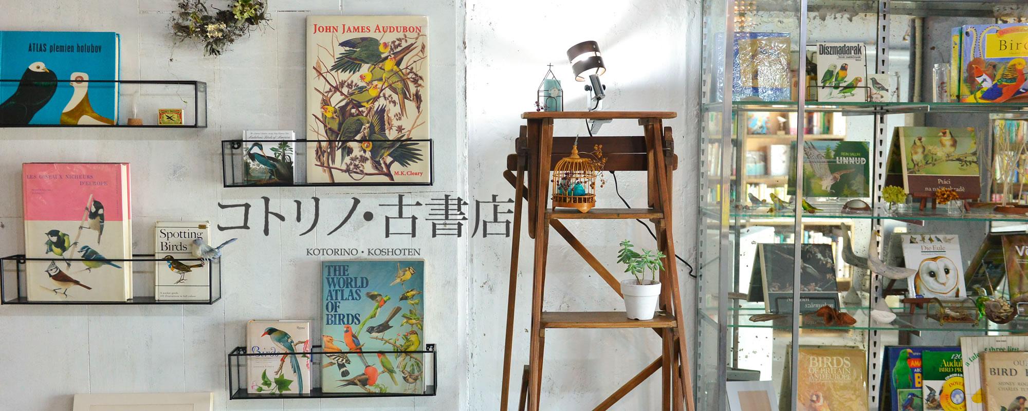 福岡平尾のコトリノ・古書店